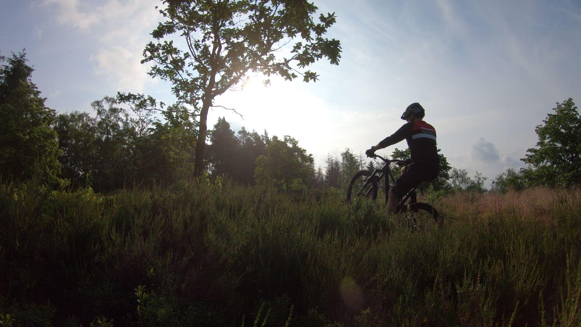 Bike-Trail2